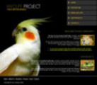 Wildlife Website Template