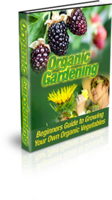 Product picture Organic Gardening (mrr)